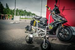 _DSC1101 (imago-nomad) Tags: summer cars nikon moscow racing raining gridgirls wtcc d700 moscowraceway
