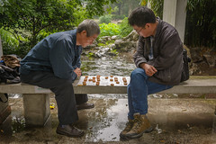 Shanghai streets 14 (stevefge) Tags: china shanghai park street people men game rain concentration candid reflectyourworld
