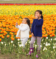 Standing in the tulips (Getting Better Shots) Tags: flowers kids children happy flora tulips fields