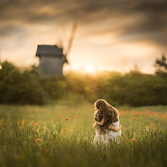 Tokarnia (iwona_podlasinska) Tags: flowers girls sunset sky flower green mill love field sisters hug