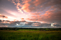 Country Meadows (CiaranFitzgeraldPhotography) Tags: england sky green grass barley clouds wonder landscape countryside amazing flickr gorgeous wheat country meadow dorset