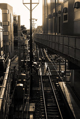Cross Traffic (H.H. Mahal Alysheba) Tags: street leica city railroad people urban monochrome japan sepia cityscape snapshot dlux keisei dluxtyp109