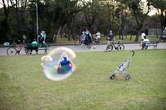 (gustavomorita) Tags: beb bolha bolhadesabo carrinho cor dentro grama gustavomorita ibirapuera menina mulher parque parqueibirapuera selvasp
