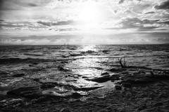 (IMAphotoArt) Tags: monocromo nuvole mare cielo sole bianco nero spiaggia bianconero onda