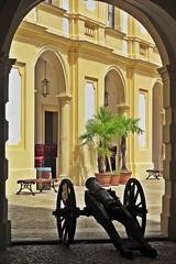 small cannon :) (green_lover) Tags: slavkov czechrepublic palace cannon architecture history interior palm
