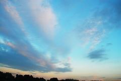 (nic lawrance) Tags: pink blue trees light sunset summer england colour texture nature clouds evening soft purple pastel shape cirrus