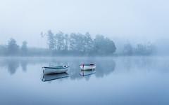 Moments (rgcxyz35) Tags: mist trees lochrusky fog scotland boats trossachs lochs