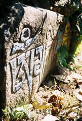 Npal, janvier 2010 (Mathieu Thauvin) Tags: street people film window out square temple town nikon looking maya stupa flag birth picture free bouddha tibet souvenir monks kathmandu spiritual monde toit durbar everest boudhanath pokhara janvier rues annapurna naissance rituel moines argentique 2010 drapeau devi fishtail npal sarangkot bodnath ngatif swayambhunath prire lumbini originaux katmandou siprituel