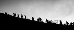 les fourmis randonneuses (Matthieu Manigold) Tags: bw italy white black monochrome contrast nikon noiretblanc blanc marche sicilia stromboli volcan randonne