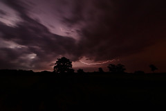 pasture lightning (dhalephotos) Tags: nature storm lightning vermilion illinois