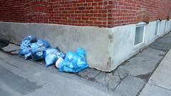 Angle mort (Robert Saucier) Tags: blue building wall montral pavement montreal bricks bleu sidewalk bags mur trottoir plastique briques sacs img3498