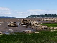 Sentier des Grves (Jacques Trempe 2,360K hits - Merci-Thanks) Tags: canada river vent quebec path stlawrence stlaurent sentier greve maree fleuve stefoy