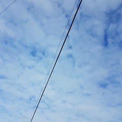 if it actually rains, i'll remember today's sunny fluffy clouds 20160706_083802 (roland) Tags: cloud vancouver clouds bicycling wire cloudy fluffy diagonal commuting biketowork fluffyclouds notrainy diagonalvancouver bike2workpix