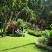Botanical_Garden_2