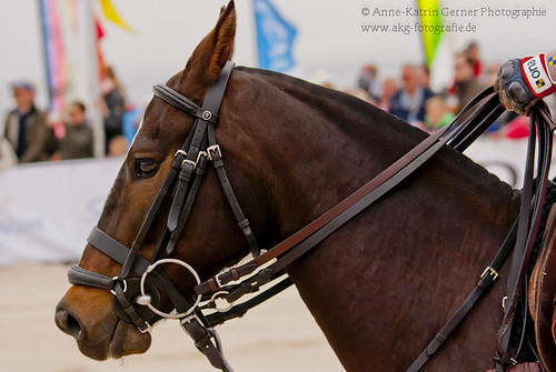 Beach Polo Sylt 6