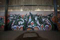 (o texano) Tags: graffiti texas houston halo ura stk heylow