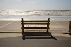 Bench: Hardelot Plage