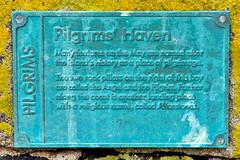 Isle Of May - Image 46 (www.bazpics.com) Tags: lighthouse bird nature landscape island scotland gull may reserve scottish puffin beacon isle sanctuary guillemot barryoneilphotography