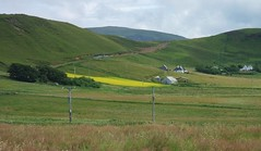 Field of Rapeseed, Isle of Skye, Scotland (ConanTheLibrarian) Tags: mountain mountains building green field yellow rural buildings landscape scotland countryside isleofskye innerhebrides hill structures rape structure hills fields canola rapeseed