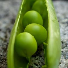 Peas (Caropaulus) Tags: macro green vegetable vert peas petitspois macromondays legume