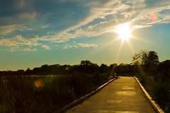 web-9518 (LionEyes Photography) Tags: ocean sunset sky cloud sun beach water clouds sand dusk path connecticut ct flare boardwalk pathway sunstar
