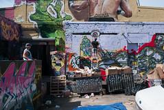 Five Pointz, Long Island City (Susan NYC) Tags: street ny art graffiti ss murals queens longislandcity pwp fivepointz