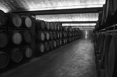 Freixenet Basiswein