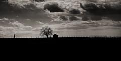 lonelinesst (homawida) Tags: white black sepia alone loneliness einsamkeit alleine