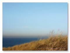 Bergen aan zee (marsmail2012) Tags: leica leicadigilux2 pastel zee bergen d2 aan leicashot marceljansen marsmail marsmail2012 leicadigilus2shot