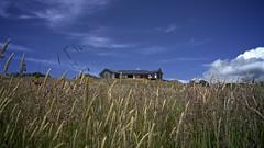 Summer Luxury (edwardfraser) Tags: summer sun house beach grass landscape haze view farm bach