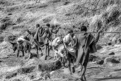 Ethiopia (Steinskog) Tags: etiopia
