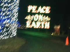 IMG_6190 (Ray Moore- RAR Studios) Tags: christmas december 2013 shadybrookfarm