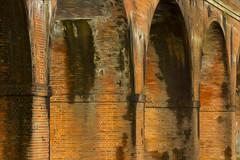 WALLINGTON VIADUCT - FAREHAM (mark_rutley) Tags: bridge brick victorian railway hampshire viaduct railwayline wallington