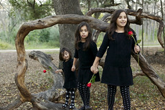 Giust Family Portraits (HumpPhoto.com) Tags: park trees nature leaves rose sanantonio sisters forest outside outdoors familyportraits woods branches siblings polka brunette dots familyphoto beautifulchildren leggings professionalphotography sweaterdress blackdresses beautifulfamily texasfamily giust familyoffive customportraits ryanhumphries ryanadamhumphries isabellahumphries humphriesphoto ryanahumphries