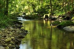 De l'autre ct du miroir (meuh57) Tags: rivire reflet ruisseau siercklesbains vision:outdoor=0929 vision:plant=0964