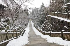 金刀比羅宮 (GenJapan1986) Tags: 2014 四国 旅行 琴平町 金刀比羅宮 雪 香川県 鳥居 日本 kagawa japan snow 冬 winter nikond600 travel shrine