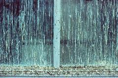 une photo de merde !! (lepublicnme) Tags: paris france film analog xpro nikon rat kodak pigeon crossprocess 400 f80 february elitechrome expired e6 fenetre argentique merde 2014 volant