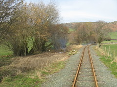 After  - Four MIle Oak looking towards Sylfaen (Tanllan) Tags: light wales train fun railway steam hedge cutting gauge narrow preservation llanfair welshpool wllr