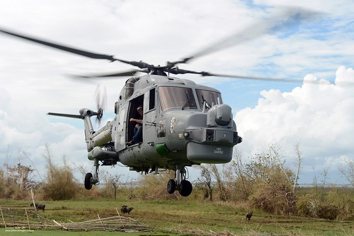 Flickriver: Defence Images's photos tagged with lynx