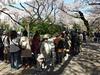 Sumo tournament @ Yasukuni Shrine (*_*) Tags: city people japan japanese tokyo spring fight shrine asia martial fat crowd tournament april sumo kanto obese yasukuni 2014 sumotori