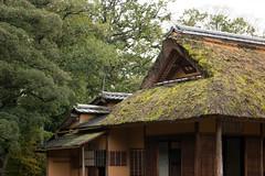 Kyoto Katsura Imperial Villa (11)