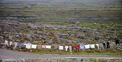 burrenlaundry1985jsm (JayEssEmm) Tags: county ireland color clare clean negative laundry burren 1985 mcelvery jsmcelvery