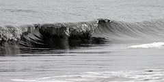 Ola (Loren_VC) Tags: sea espaa water mar andaluca spain agua wave ola