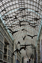 """""""Flight Stop"""" by Michael Snow @ The Eaton Centre [Toronto - 15 August 2014] (Doc. Ing.) Tags: city summer toronto ontario canada art metal geese iron arches installation northamerica on 2014 michaelsnow flightstop irondetails detalhesemferro"""