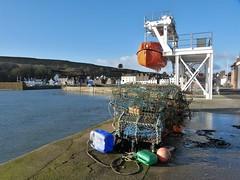 Sunny Stoney Harbour (chdphd) Tags: aberdeenshire lobster sci stonehaven creels kincardineshire scimarinetrainingacademy losbterpots