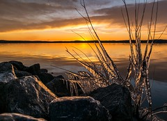 Icy Sunset (cwhitted) Tags: sunset samsung chathamcounty jordanlake nx30 ebenezerchurchrecreationarea samsungnx30 beverettjordanlake samsungnx1855mmf3556