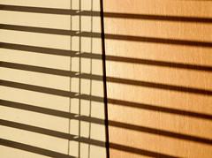 'Sun Blind' 24/365 (EZTD) Tags: england sun sol sunshine soleil foto blind photos enero photographs fotos sonne janvier januar fotograaf 2015 aphotoaday project365 p365 aphotoadayproject 365photosinayear eztd eztdphotography photograaf eztdphotos eztdgroup 3652015 daybyday2015 2015inpictures