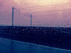 Purple rain (Rob₊Lee) Tags: guangzhou purple rip purplerain