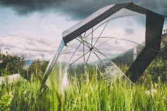 (** Lor **) Tags: primavera rain umbrella lluvia tormenta paraguas