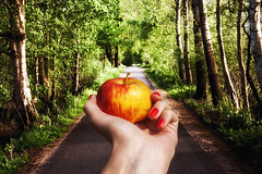 Take this apple and enjoy the taste. (Janne Fairy) Tags: trees green apple nature fruit forest canon wonderful hand natur wald bume apfel zauberhaft obst canon500d eos500 eos500d